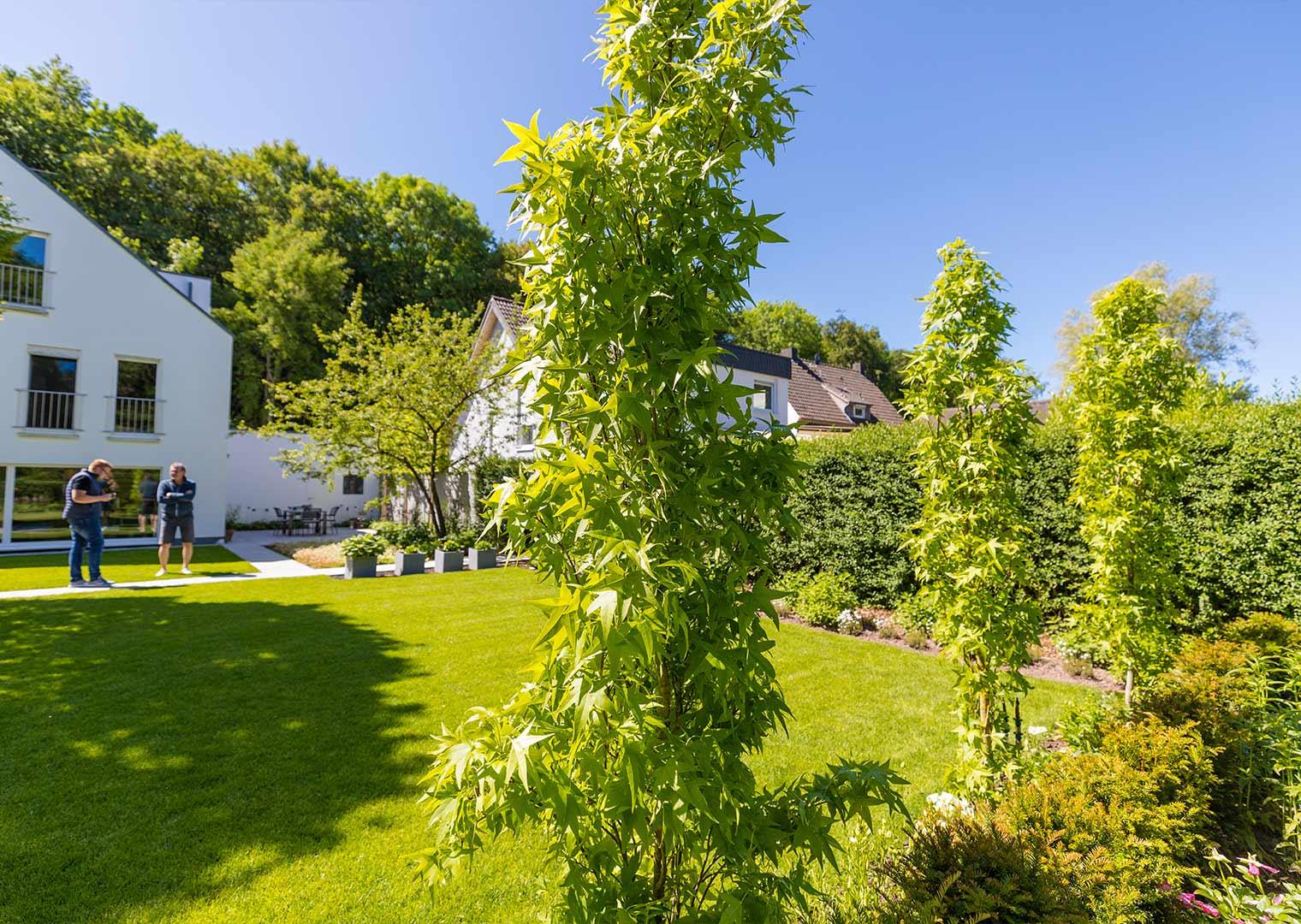 Link zur Bilddatei: koetter_galabau_landschaftsbau_soest_referenz_galeriebilder_garten_mit_terrasse_und_liegebereich_bild_03