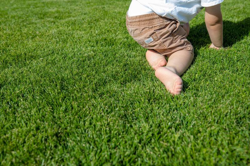 Rollrasen oder Rasensaat: Kind auf Rasen