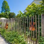 Grundstücksabgrenzung – Zaun, Hecke oder Mauer?